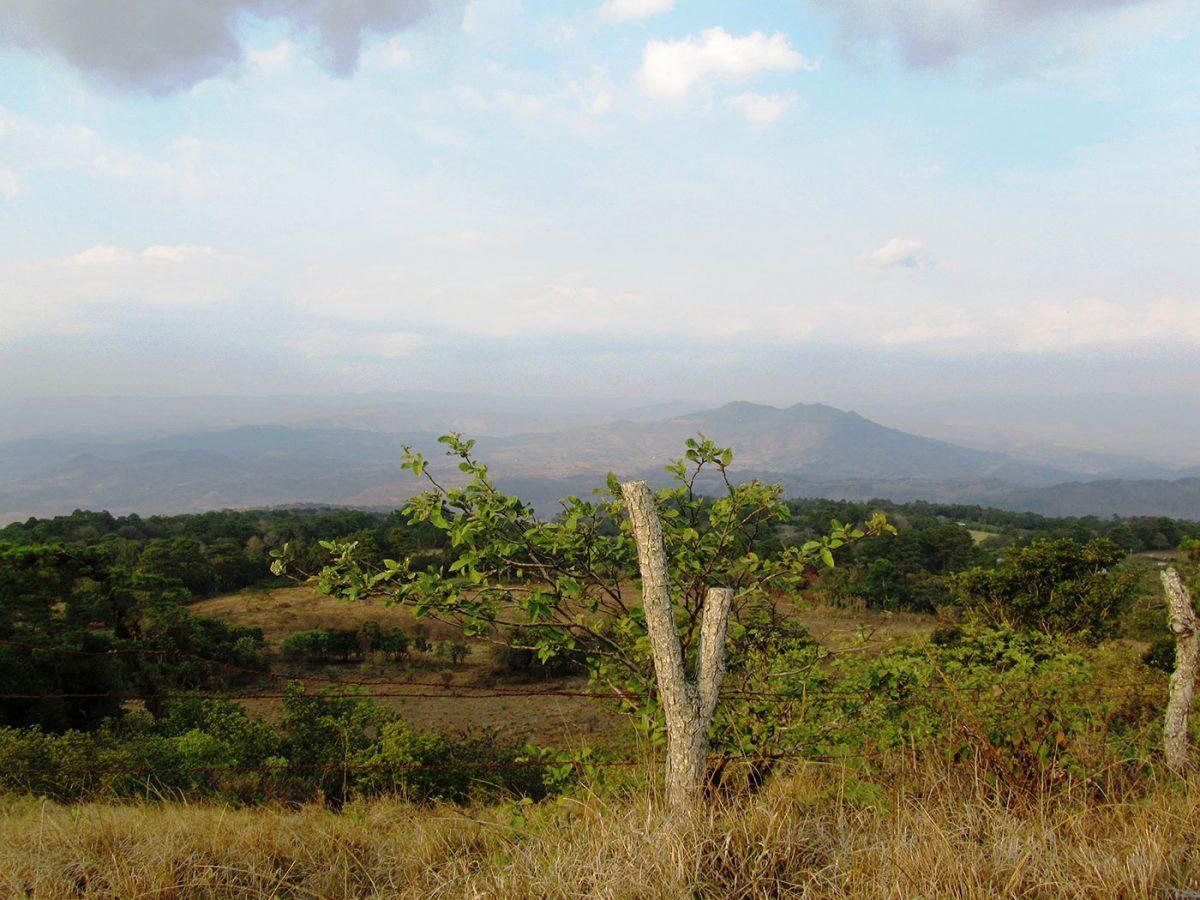 Escultores del Norte de Nicaragua
