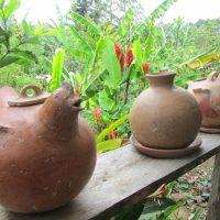 Birdwatching Pasur Nicaragua